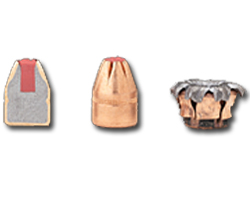 Hornady Critical Defense Ammunition FTX Bullet