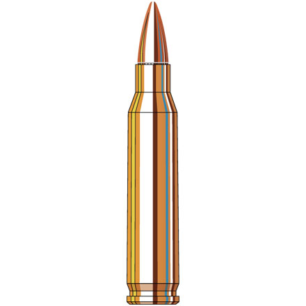223 Remington 62 Grain FMJ Black 20 Rounds