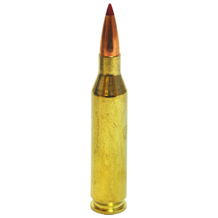 243 Winchester 90 Grain ELD-X Precision Hunter 20 Rounds