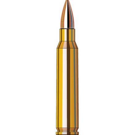 Image for 5.56 Nato 75 Grain Boat Tail Hollow Point Superformance Match 20 Rounds
