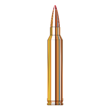 300 Winchester Mag 165 Grain GMX Full Boar 20 Rounds