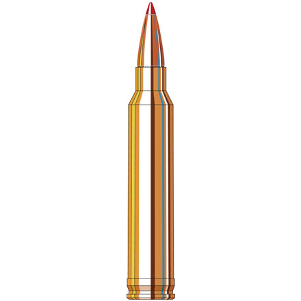 300 Winchester Mag 180 Grain (SST) Super Shock Tipped Superformance 20 Rounds