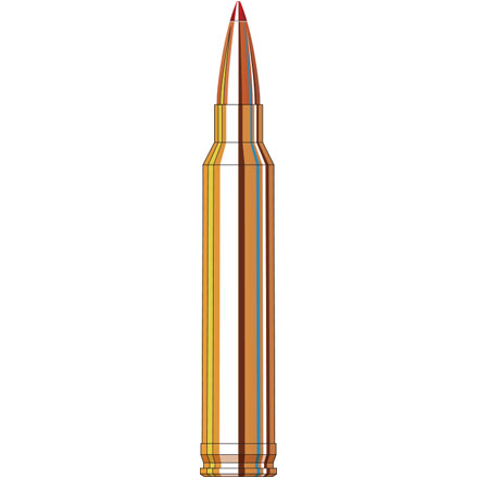 300 Winchester Mag 180 Grain Interbond Superformance  20 Rounds