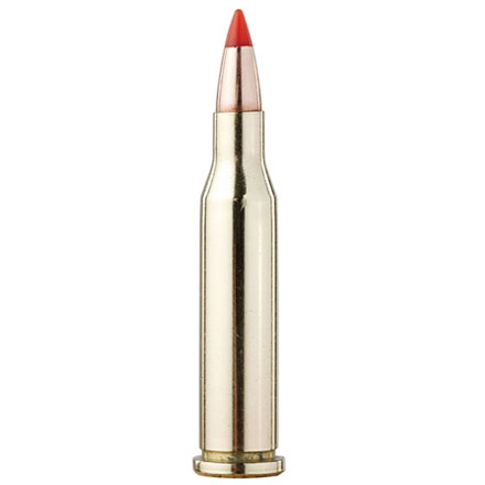 17 Hornet 20 Grain V-Max Superformance Varmint 25 Rounds