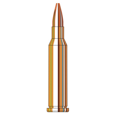 17 Hornet 25 Grain HP 50 Rounds