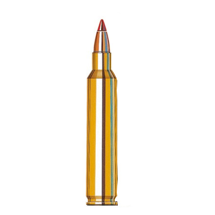 Image for 204 Ruger 32 Grain V-Max Varmint Superformance 20 Rounds