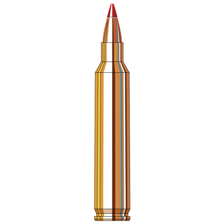 Image for 204 Ruger 40 Grain V-Max Superformance 20 Rounds