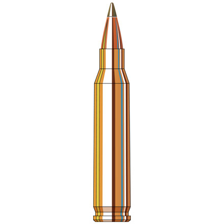 223 Remington 35 Grain NTX 20 Rounds