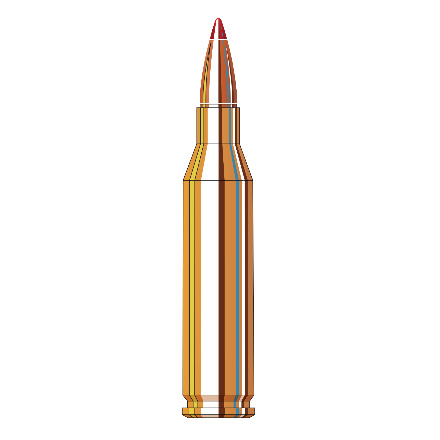 243 Winchester 75 Grain V-Max Superformance Varmint 20 Rounds