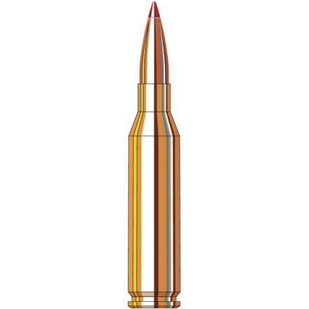 260 Remington 129 Grain SST Superformance 20 Rounds
