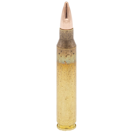 223 Remington 55 Grain Full Metal Jacket 50 Rounds (Oriented)