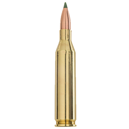 243 Winchester 70 Grain BlitzKing Prairie Enemy 20 Rounds