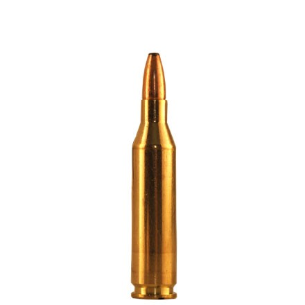 Image for 243 Win Oryx 100 Grain American PH 20 Rounds