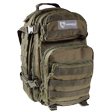"Scout Backpack Green 16""x10""x10"""