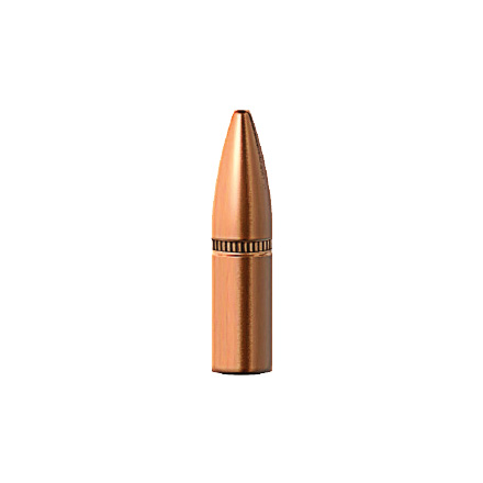 Image for 5.56/223 Caliber .224 Diameter 55 Grain TAC RRLP 100 Count