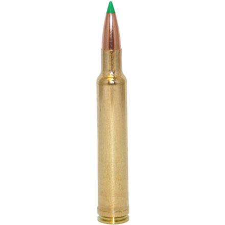 300 Weatherby Mag 165 Grain Nosler Ballistic Tip 20 Rounds