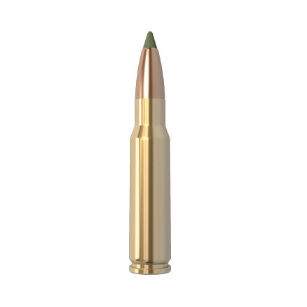 Image for 308 Winchester 168 Grain E-Tip 20 Rounds