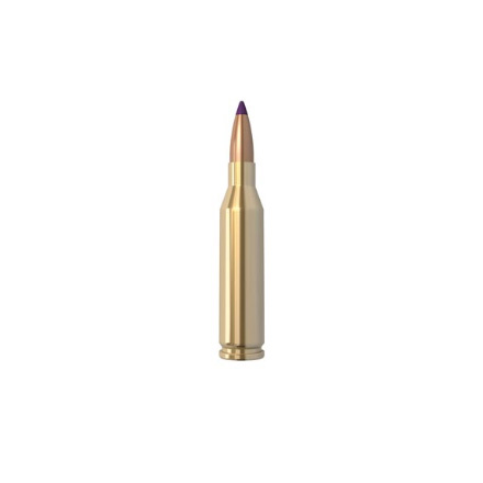 Image for 243 Winchester 90 Grain Ballistic Tip 20 Count