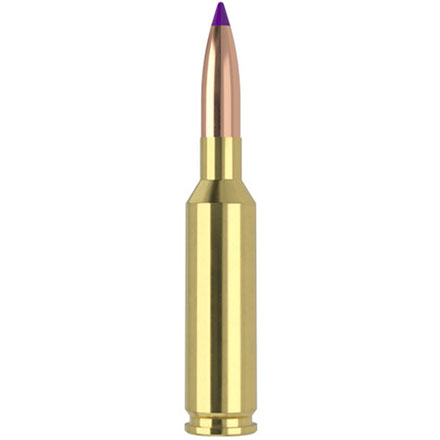 6mm Creedmoor 95 Grain Ballistic Tip 20 Rounds