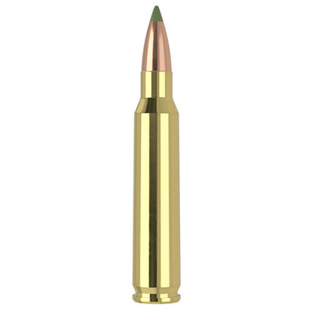 223 Remington 55 Grain E-Tip 20 Rounds