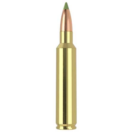 30 Nosler 180 Grain E-Tip 20 Rounds