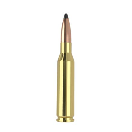 260 Remington 125 Grain Partition Trophy Grade 20 Rounds