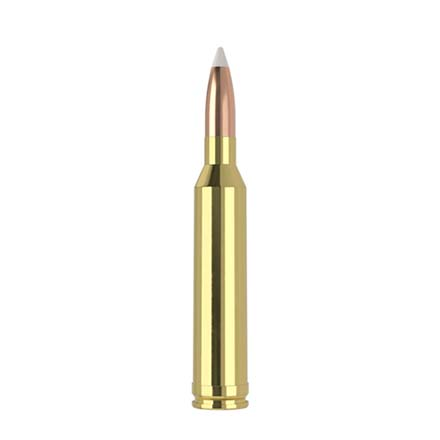 264 Winchester 130 Grain AccuBond Trophy Grade 20 Rounds