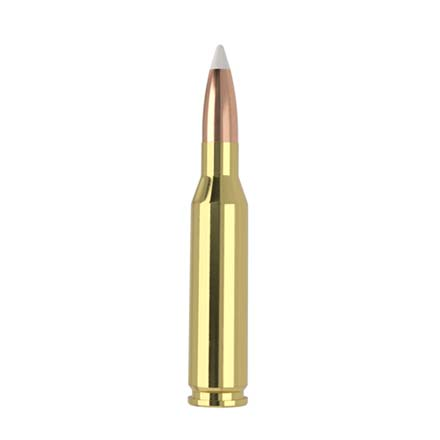 260 Remington 130 Grain AccuBond 20 Count