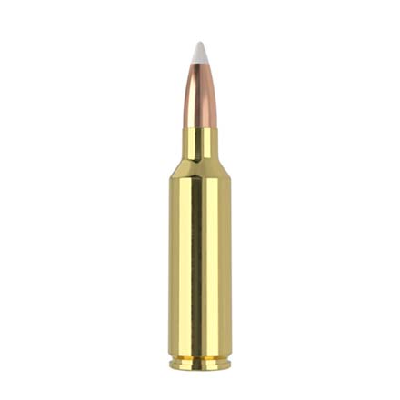 270 Winchester Short Mag (WSM) 140 Grain AccuBond Trophy Grade 20 Rounds