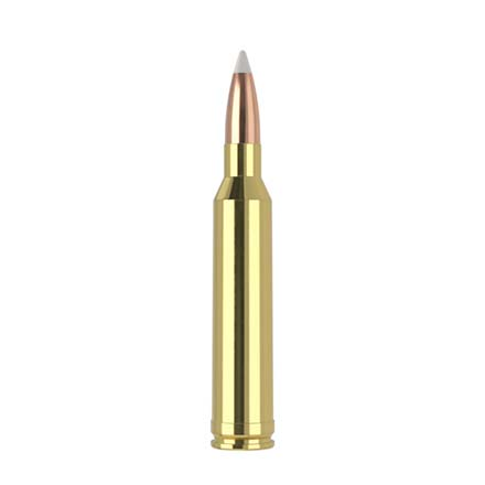 7mm Remington Mag 140 Grain AccuBond Trophy Grade 20 Rounds