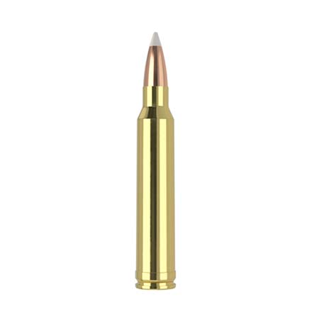 300 Winchester Mag 180 Grain AccuBond Trophy Grade 20 Rounds
