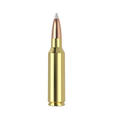 300 Winchester Short Mag (WSM) 180 Grain AccuBond Trophy Grade 20 Rounds