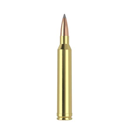7mm STW 175 Grain Long Range AccuBond 20 Rounds