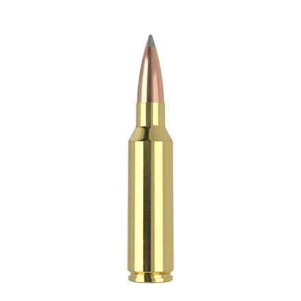 300 Winchester Short Mag (WSM) 190 Grain Long Range AccuBond 20 Rounds