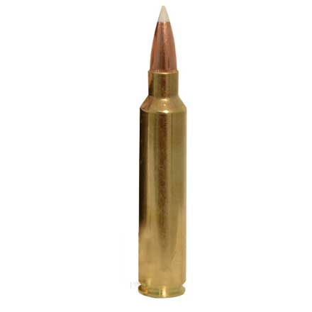 30 Nosler 180 Grain AccuBond Trophy Grade 20 Rounds