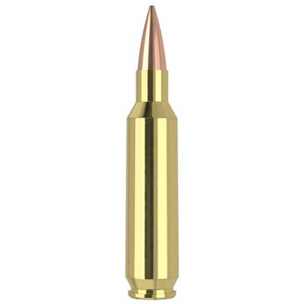 22 Nosler 85 Grain RDF Hollow Point Boat Tail Match Grade 20 Rounds