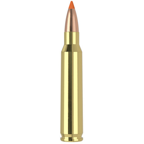 223 Remington 55 Grain Ballistic Tip Varmint 20 Rounds