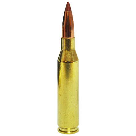 260 Remington 140 Grain Ballistic Tip 20 Rounds