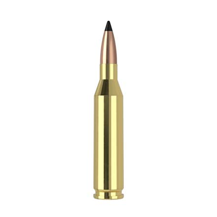 243 Winchester 70 Grain Flat Base Tipped Varmageddon 20 Rounds
