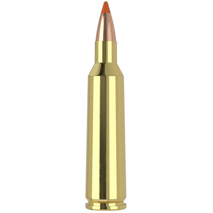 22-250 Remington 40 Grain Lead Free Ballistic Tip Varmint 20 Rounds