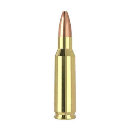 221 Remington Fireball 40 Grain Flat Base Hollow Point Varmageddon 20 Rounds