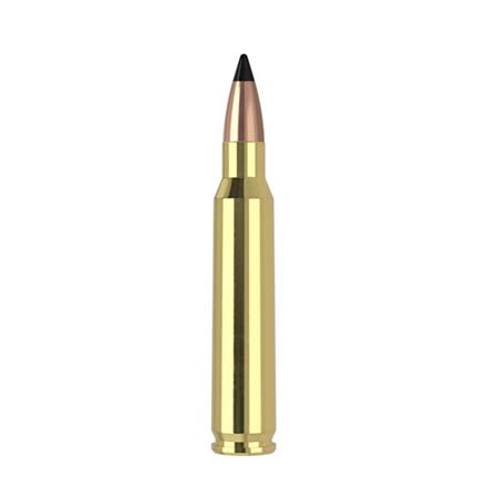 223 Remington Nosler 53 Grain Varmageddon Tipped 20 Rounds