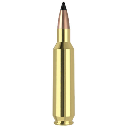 22 Nosler 53 Grain Flat Base Tipped Varmageddon 20 Rounds