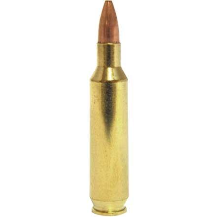 22 Nosler 62 Grain Flat Base Hollow Point Varmageddon 50 Rounds