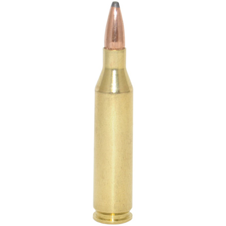 243 Winchester 100 Grain Non Typical Soft Point 20 Rounds