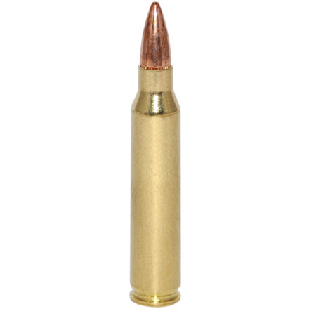 American Eagle 223 Remington 62 Grain Full Metal Jacket Boat Tail 20 Rounds