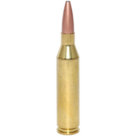 Image for 243 Winchester 95 Grain Fusion Moly Coat 20 Rounds