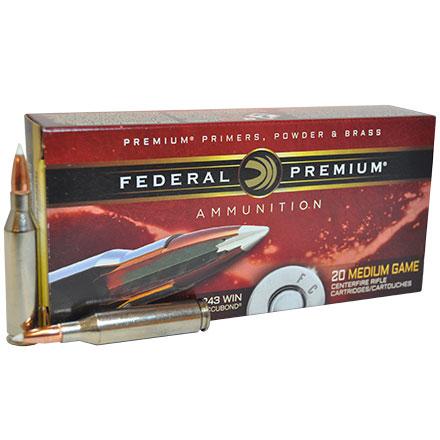243 Winchester 90 Grain Nosler Accubond inchVital-Shok inch 20 Rounds