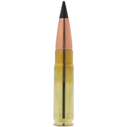 Image for 300 AAC Blackout 120 Grain TAC-TXBT 20 Count