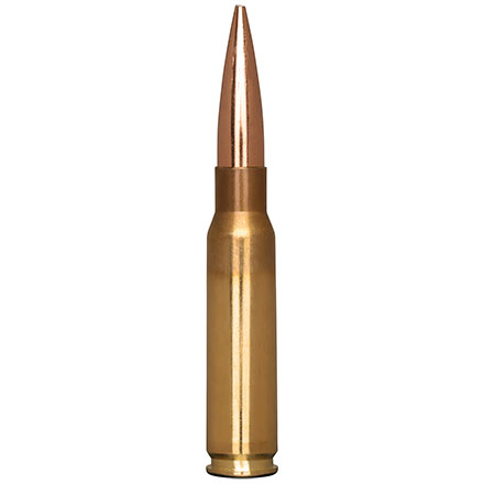 308 Winchester 200 Grain 200.20x Hybrid Target 20 Rounds